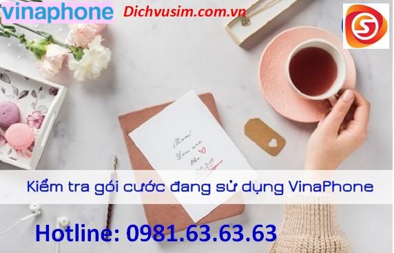 Hướng dẫn từng bước kiểm tra gói cước VinaPhone đang sử dụng