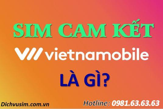Sim Cam Kết Vietnamobile Là Gì? Có Nên Dùng Sim Cam Kết  Không?